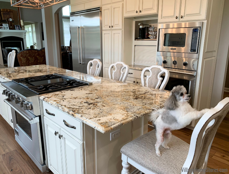 Kitchen island with granite overhang and small dog on chair