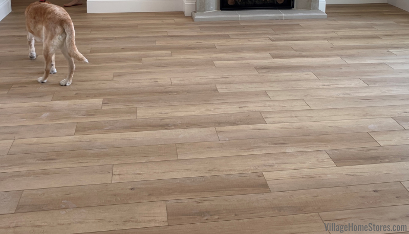 Pet proof COREtec flooring in Calypso Oak color. Flooring by Village Home Stores for Hazelwood Homes.